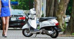 2016 Suzuki PX